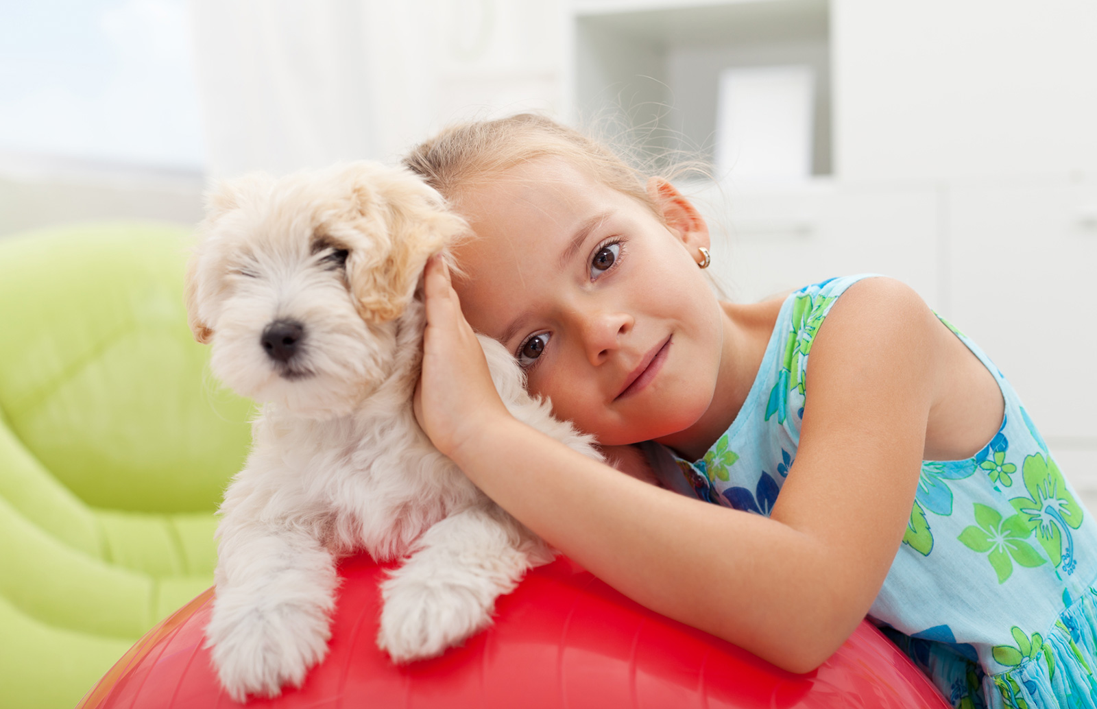 Pet friendly apartments for rent in Arvada Colorado